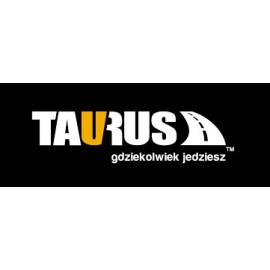 BOXY TAURUS